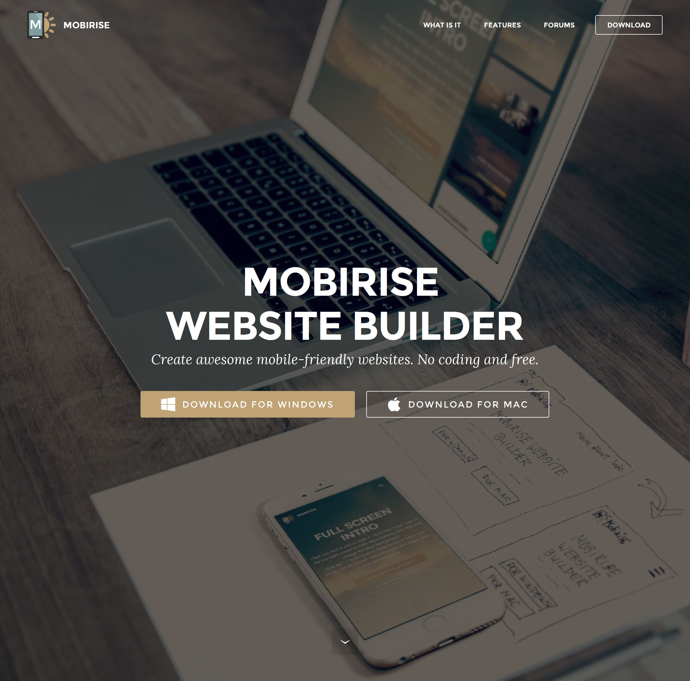 Top  Web Builder