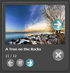 javascript popup at bottom Free Album Templates